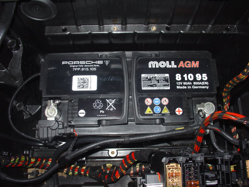 Original Pana Battery mid-2010.JPG